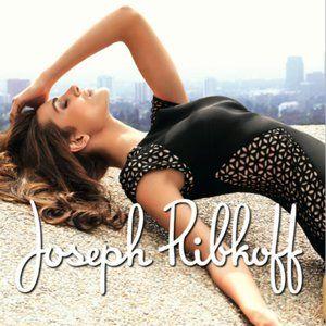 Joseph Ribkoff Laser Cut Cap Sleeve Dress